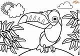 Coloring Toucan Bird Blogx Animal Birds Tropical Printable Peppa Pig Llama Kawaii Forest Animals sketch template