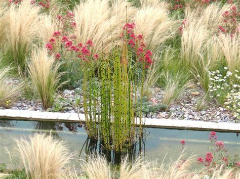 cour de cuisine gratuit plantes graphiques créer un jardin contemporain