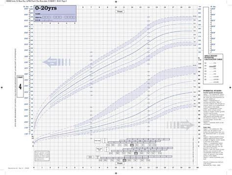 Infant Height And Weight Chart Oltre 25 Fantastiche Idee