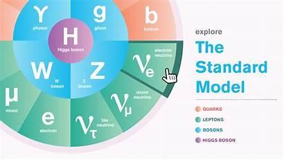 Standard Physics Particle Matter Elementary Quantum Energy