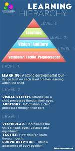 Sensory Systems that Make up the Learning Hierarchy of a ...