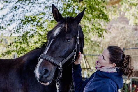 urlaub mit dem pferd erholung fuer alle gutshaus