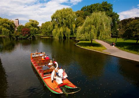Swan Boats Fenway Park by Pictures Of Boston