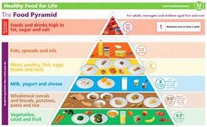The Irish Food Pyramid  U2013 A Recipe For Diabesity  U2013 Zo U00eb Harcombe