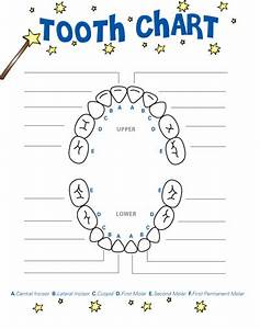 Fun Tooth Fairy Activities