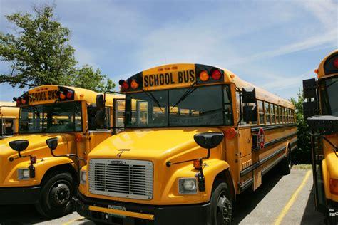 school bus  cost  student