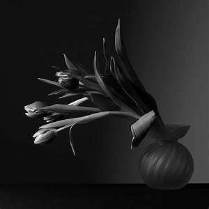 A tribute to Robert Mapplethorpe. by ColdCappuccino on ...