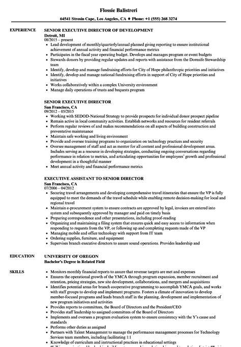 Director Resume Sample | TemplateDose.com