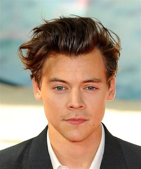 Harry Styles Short Wavy Casual Hairstyle   Medium Brunette