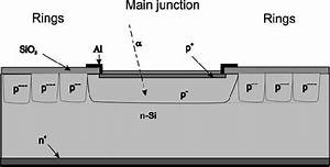 Structure Of The Junction Termination Extension Apd
