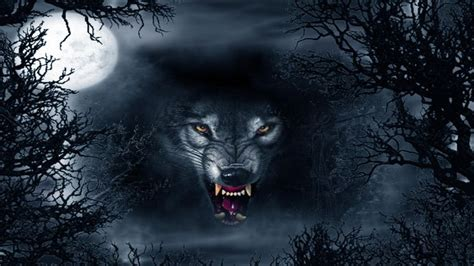 Beast Scary Wolf Wallpaper by Evil Wolf Abstract Ultra Hd 4k Wallpapers Abstract