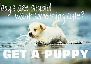 Cute Puppy Quotes Tumblr | www.imgkid.com - The Image Kid ...