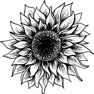 """""""Black and White Sunflower"""" Stickers by juliahealyy ..."""