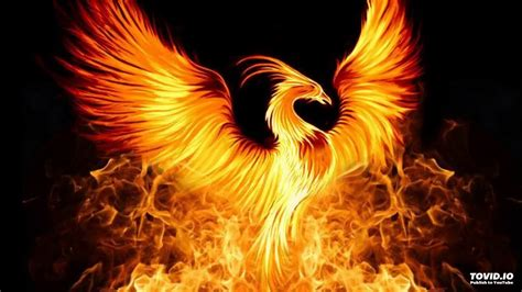 nils andreas phoenix original mix youtube