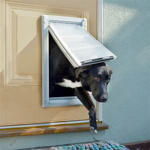 flaps for fido program gives back to animal rescues news With pet 1 dog door