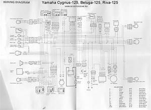 Shadow Blog   U042d U043b U0435 U043a U0442 U0440 U043e U0441 U0445 U0435 U043c U0430 Yamaha Cygnus 125  Beluga 125