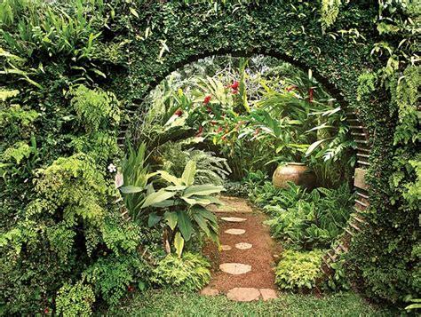 tropical garden reinvented garden design