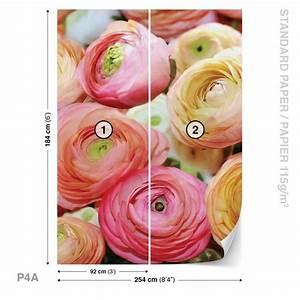 fleurs pivoines couleurs poster mural papier peint With affiche chambre bébé avec livraison fleurs domicile pivoines