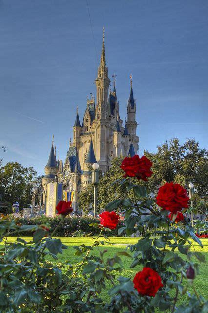 Cinderella's Castle Disney World Rose Garden