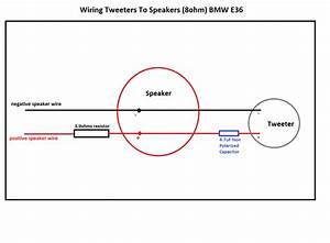 Tweeter Wiring Diagram