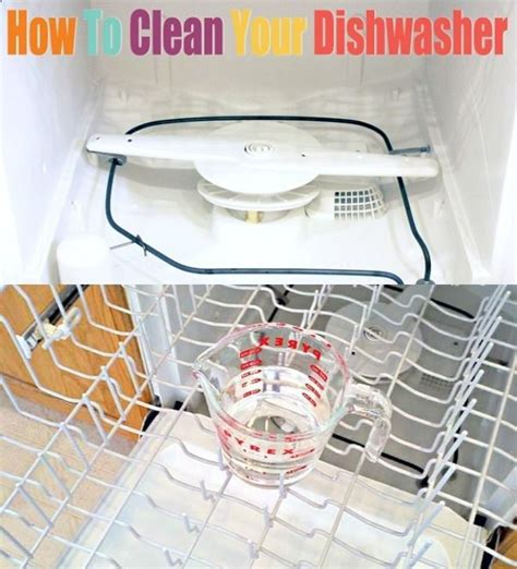 cleaning dishwasher with vinegar how to clean your dishwasher run dishwasher with 1 cup of vinegar on top rack then run again