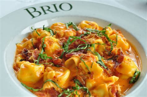 cuisine brio pasta alla vodka recipe dishmaps