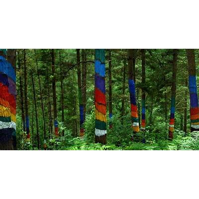 The Painted Forest of OmaUnusual Places