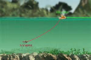 late summer fly fishing   hopper dropper gearjunkie
