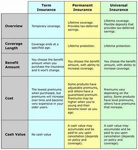 Different Types Of Life Insurance Policy - How to Retire ...