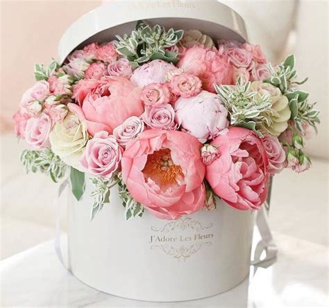 Peony Rose Shower Baby And Flower On Pinterest
