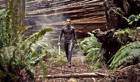 humboldts mystical redwood forest film sets   la
