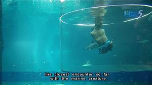 Nick Vujicic dives with sharks in Marine Life Park ...