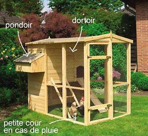 Comment Elever Des Poules : elever des poules pondeuses bio dans son jardin le blog ~ Melissatoandfro.com Idées de Décoration