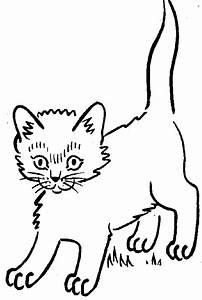 Kitten Cat Miscellaneous Clipart On Kitty Cats Clip Art