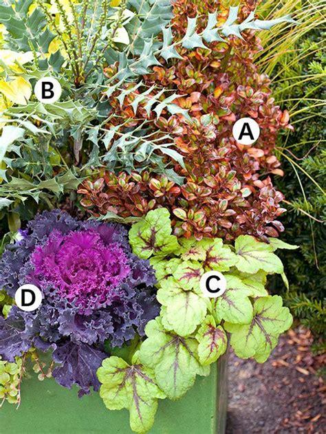 25 Best Images About Hort 2 Floral Designs On Pinterest