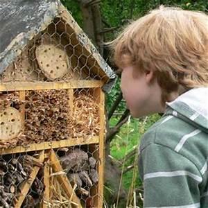 Bienenhaus Selber Bauen : insektenhotel selbst bauen bauanleitungen ~ Articles-book.com Haus und Dekorationen