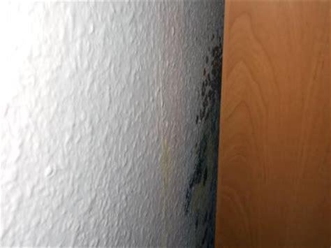 Schimmel An Möbeln by Schimmel An M 246 Beln Extrahierger 228 T F 252 R Polsterm 246 Bel