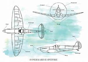 Spitfires  U2013 Very Brambleberry