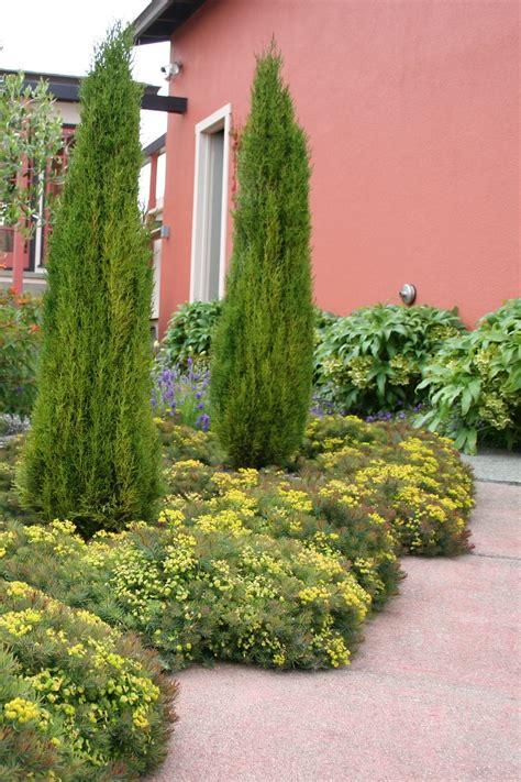 tuscan garden plants mediterranean garden design how to create a tuscan garden north coast gardening
