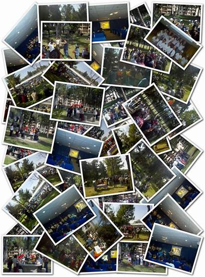 Ipn Collage
