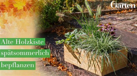 Alte Holzkiste Spätsommerlich Bepflanzen  Mein Schöner Garten
