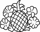 Pineapple Coloring Cartoon Potatoes Outline Fruits Vegetables Pea Getdrawings Drawing sketch template