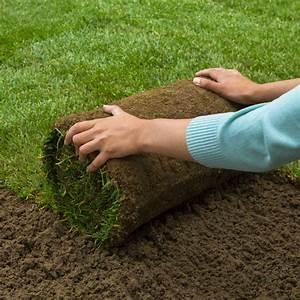 Gazon En Rouleaux : gazon naturel en rouleau x 1m2 rouleau 0 4m x 2 5m 20 rouleaux minimum sur palette gamm vert ~ Farleysfitness.com Idées de Décoration