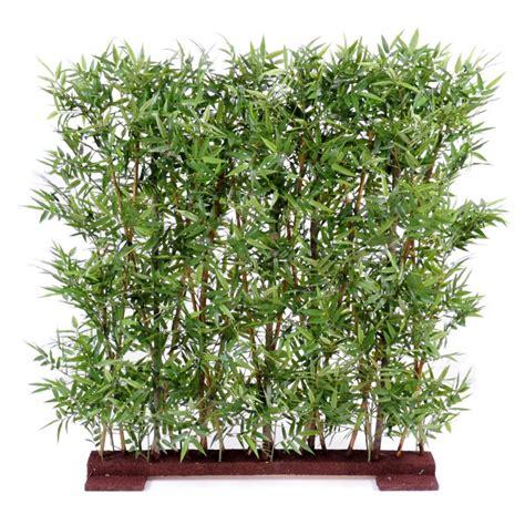 bureau en bambou cloison végétale haie de bambou kollori com