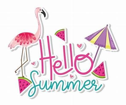 Summer Hello Card Vector Flamingo Vecteezy Clipart