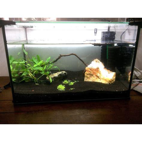 filtre exhausteur 2 mousses a pompe pour aquarium de 60 litres