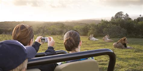 Best Safaris In Kenya Safari In Kenya Top 5 Safari Destinations In Kenya