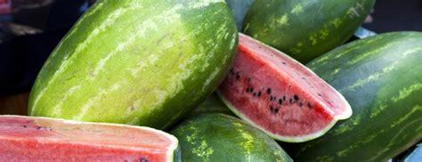types  watermelon berkeley wellness