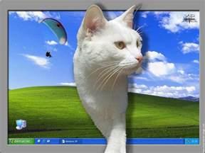desktop background fond d ecran ordinateur telecharger
