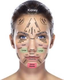 Does Your Face Reflect The Health Of Your Body Organs? - Wellness ...  Acne Acupuncture